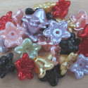 Mixed pearly flowers. Pack of 50