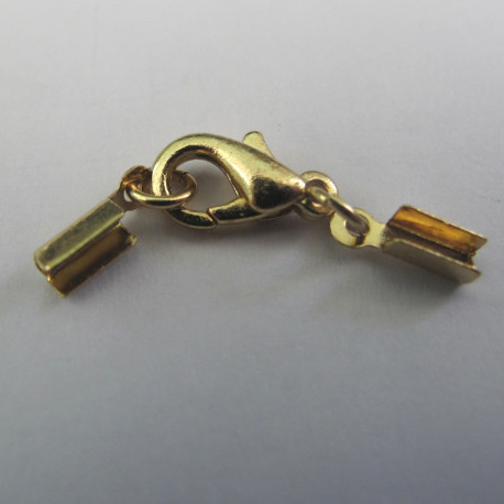 F4108g -Small box ends with clasp. Pack of 5
