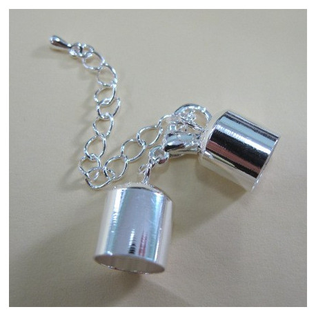 F4250s - Large bell closer with extension chain