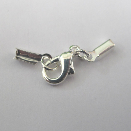 F4108 - Small Box End with Clasp, Silver Colour, Pack of 5.