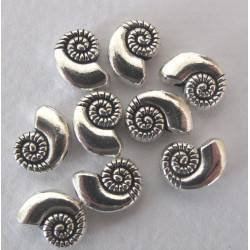 Shell bead, pack of 10