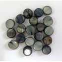 Small shell coin beads. Pack of 20.